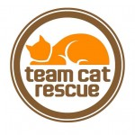 Team Cat Rescue